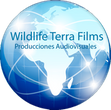 wildlife terra films